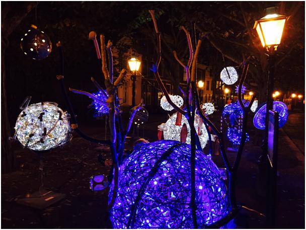 De week van Monique IJsselsteijn - Lichtjesparade 2014