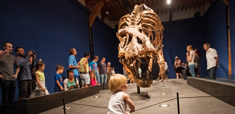Naturalis T-rex Cultuurmarketing Awards