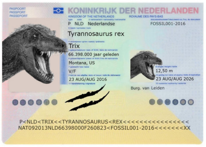 Paspoort Trix case Cultuurmarketing Awards